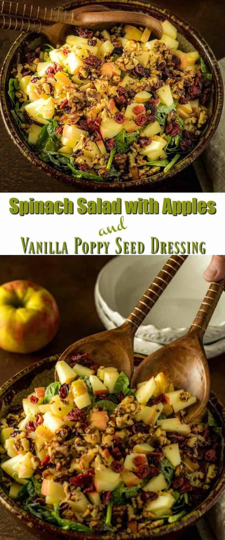 Spinach Salad with Apples and Vanilla Poppy Seed Dressing Pin - A great way to enjoy apples at their peak, Spinach Salad with Apples and Vanilla Poppy Seed Dressing combines nutrient-rich baby spinach with crisp apples, candied walnuts, and dried cranberries (or cherries). It all gets drizzled with a tangy, yogurt based poppy seed dressing! A perfect fall side dish... #applerecipes #spinachandapplesalad #vanillapoppyseeddressing #glutenfree #quicksides #healthysides #craisins