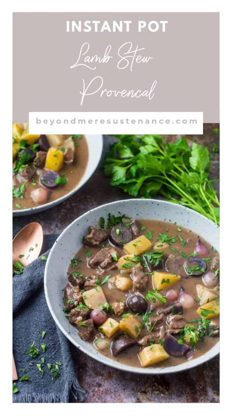Pinterest pin of Instant Pot Lamb Stew Provencal in a grey bowl with grey napkin.