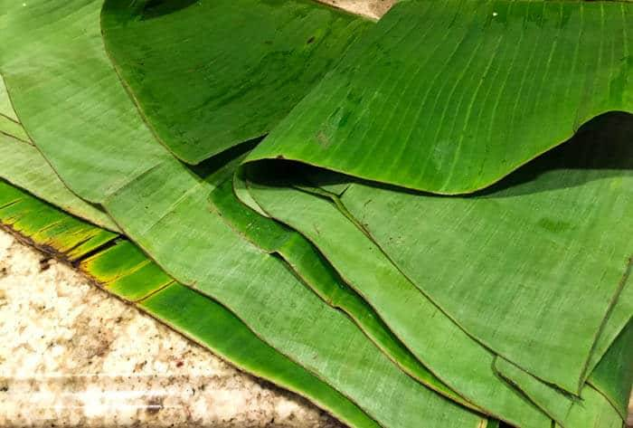 A stack of fresh banana leaves ready to prepare the fish packets.