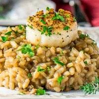 Seared Scallop With Mushroom Risotto