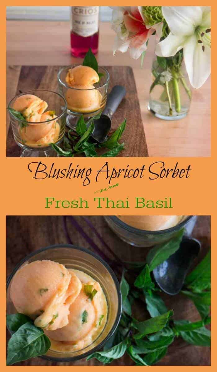 Blushing Apricot Sorbet With Fresh Thai Basil - Fresh, sun-ripened apricots and crisp, dry rosé pair up with fragrant Thai basil in this light and refreshing Blushing Apricot Sorbet With Fresh Thai Basil... Not a dessert eater? This summery sorbetmay change your mind when you taste it! sorbet recipes | apricot sorbet | boozy frozen desserts