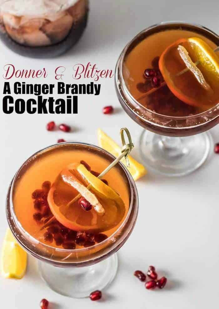 Ginger Brandy Cocktail Short Pin - A festive time of year calls for a festive cocktail, right? Donner and Blitzen: A Ginger Brandy Cocktail makes a lovely addition to your holiday cocktail party... Combine ginger simple syrup, brandy, pomegranate molasses, and pomegranate juice with ice in your cocktail shaker, pour into your favorite glassware, top off with ginger beer, and a few shakes of orange bitters. Garnish with an orange slice, and crystallized ginger. Bellissimo! #pom #Fee #gingerbrandycocktail #wintercocktail #fallcocktail #Christmascocktail
