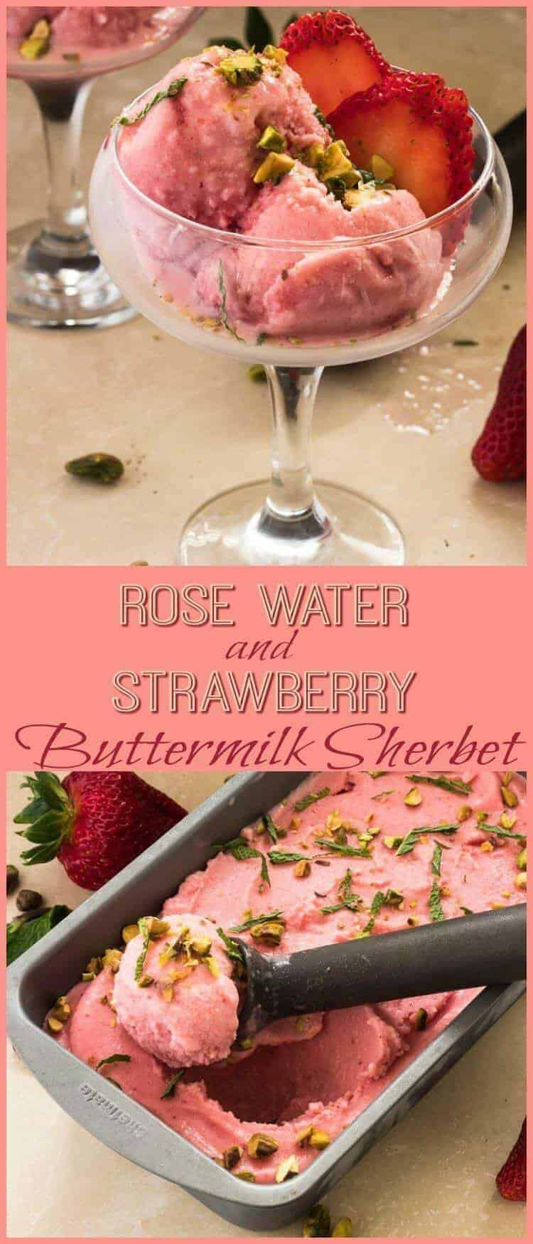 Strawberry and Rose Water Buttermilk Sherbet - A light, fruity frozen treat with just a hint of exotic rose water. Rose Water and Strawberry Buttermilk Sherbet gets its tang and body from buttermilk... A perfectly lovely chilly dessert on a hot summer's day! frozen desserts | sherbet recipe | buttermilk sherbet | rose water sherbet