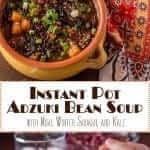 Instant Pot Adzuki Bean Soup Long Pin