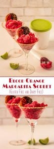 Blood Orange Margarita Sorbet Long Pin