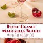 Blood Orange Margarita Sorbet Long Pin