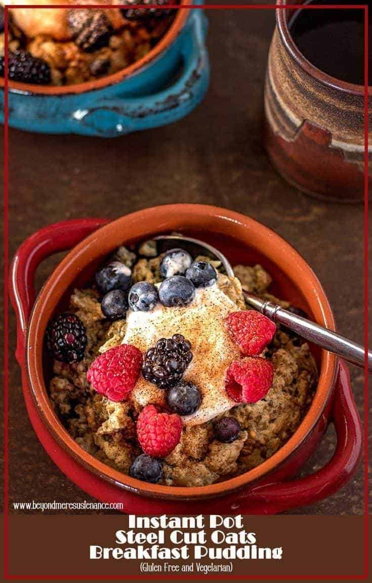 Tired of the same old oatmeal? It can get pretty boring!Instant Pot Steel Cut Oats Breakfast Pudding is a new