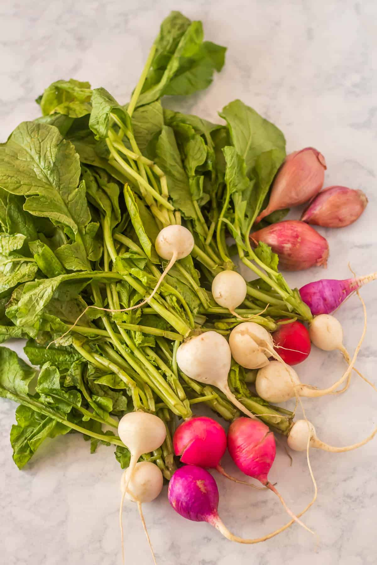 Roasted Miso Glazed Radishes - beautiful multi colored radishes with their greens!