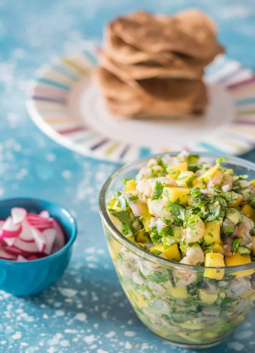 A bowl of shrimp ceviche, sliced radishes, and baked tortillas on a striped plate.