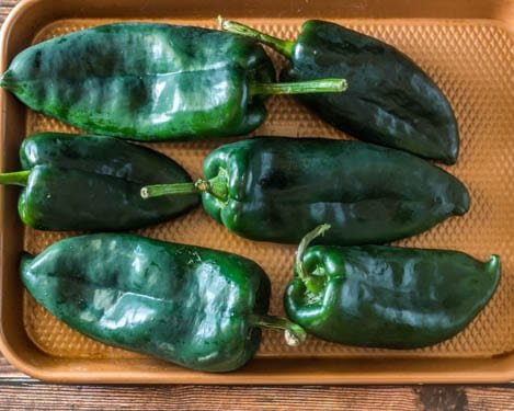 Fresh poblano green chiles on a baking sheet before going into the oven to roast.