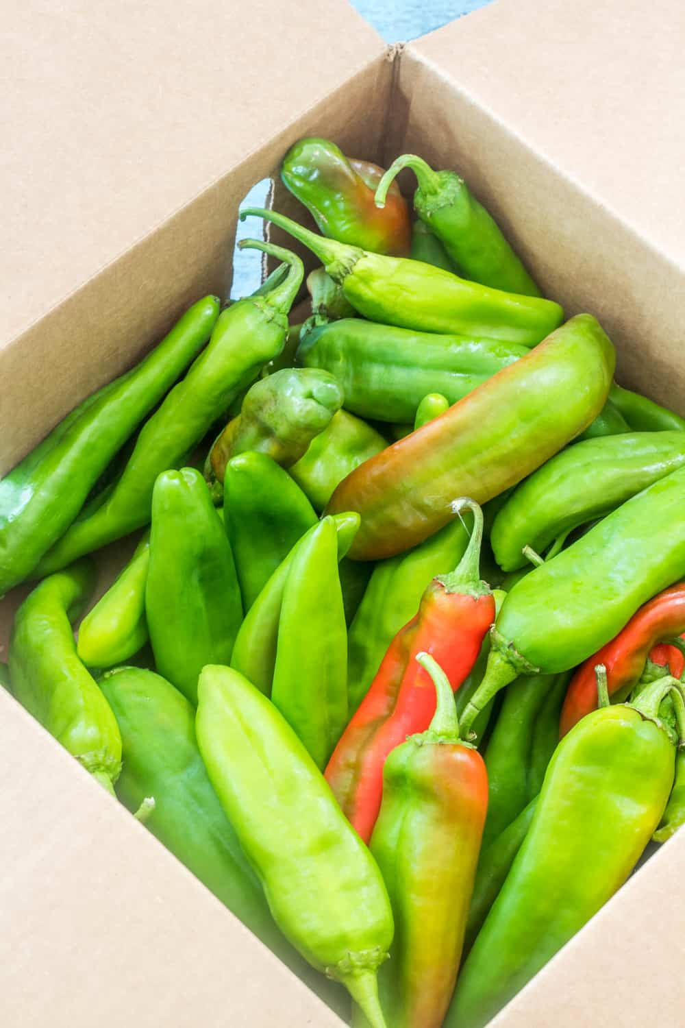 A box of fresh Hatch green chiles prior to roasting.