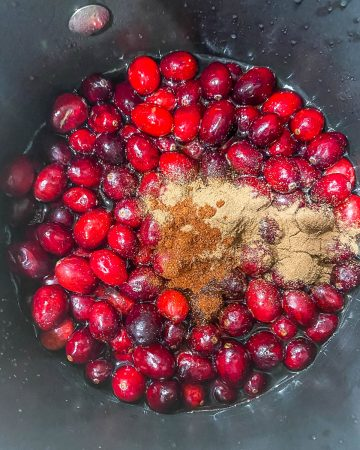 Fresh cranberries, triple sec, ancho, cinnamon in a small saucepan before cooking.