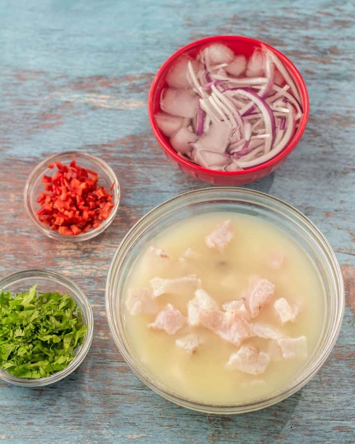 Ingredients prepped for the ceviche - thin-sliced red onion in ice water, cubed redfish in fresh lime juice, chopped cilantro, minced Fresno chile.